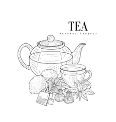 Tea and its components hand drawn realistic sketch vector