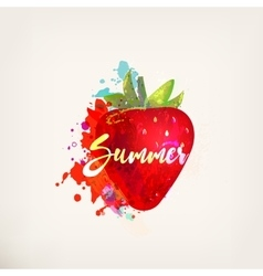 Watercolor strawberry vector image