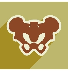 Flat icon with long shadow human pelvis vector