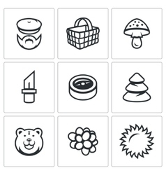 Set of gathering in the forest icons vector