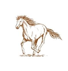 Brown horse sketch of arabian mare vector image vector image