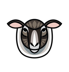 drawing head of sheep vector image