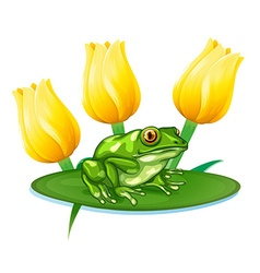 Green frog on water lily vector