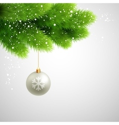 Green pine branches with white ball vector