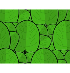 Spinach texture fresh green ornament green lettuce vector