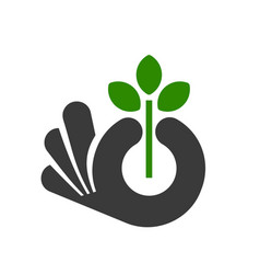 hand holding a plant vector image