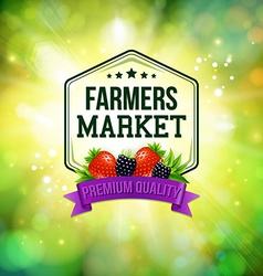Farmers market poster blurred background with vector