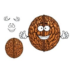 Smiling happy whole walnut character vector