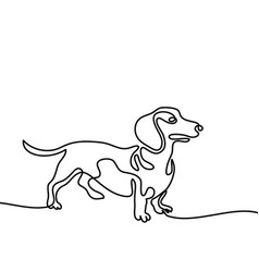Dog jumping and playing vector