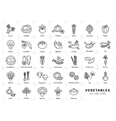 Vegetables icons isolated spices logo trendy vector