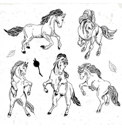 Set of hand drawn monochrome sketch horses vector image