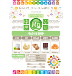 Magnesium mineral supplement rich food icons vector