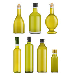Olive oil bottle glass isolated vector