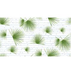 Tropical fan palm leaves jungle green leaf vector