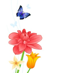 Greeting card with colorful butterflies and vector image