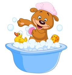 teddy bear taking a bath vector image