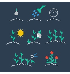 Sequence of growing a plant vector image