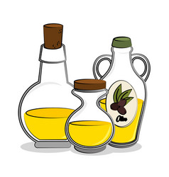 olive oil healthy product vector image