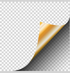 Page curl of a blank sheet of paper with gold vector