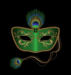 Mask with peacock feather vector