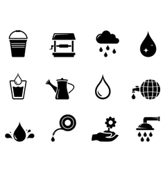 Watering black icon vector