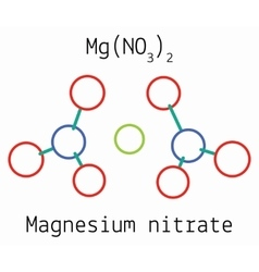 Magnesium nitrate MgN2O6 molecule vector image vector image