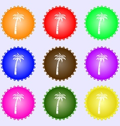 Palm icon sign big set of colorful diverse vector