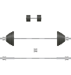 Barbell dumbbell vector