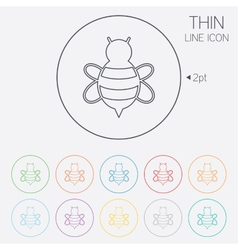 Bee sign icon honeybee or apis symbol vector