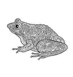 Frog isolated black and white ornamental doodle vector