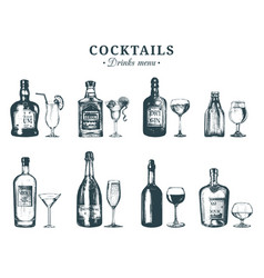 hand sketched bottles and glasses of alcoholic vector image