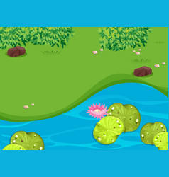 Park scene with lotus and waterlily vector