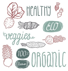 Eco hand drawn lettering and veggies vector