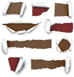 torn papers vector image vector image