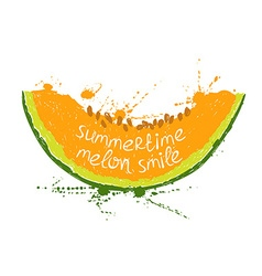 with isolated orange slice of melon vector image