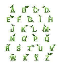 Green herbal alphabet with leaves vector