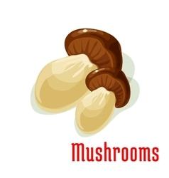 Boletus or porcini edible mushroom cartoon icon vector