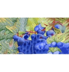 Watercolor blueberry abstract background vector image vector image