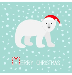 Arctic polar bear cub Red Santa hat Cute cartoon vector image