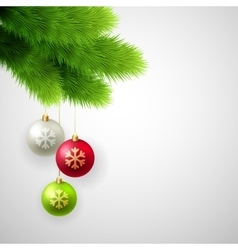 Green pine branches with white red and vector