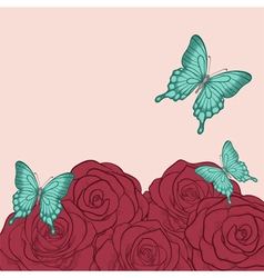 butterflies and roses in a hand-drawn vector image