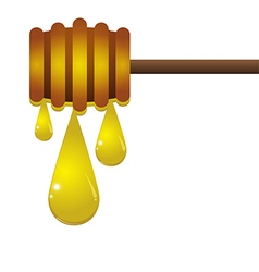 Drop of honey on a white background vector image vector image