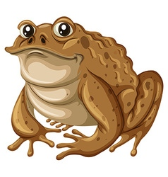 Single frog with brown skin vector image