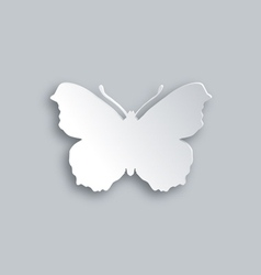White butterfly vector