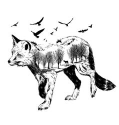 Double exposure silhouette of fox wildlife concep vector