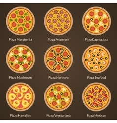 Different type of pizza vector