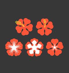 hibiscus flowers set vector image