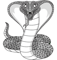 Angry cobra tattoo vector image