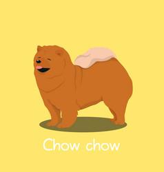 An depicting a cute chow chow dog cartoon vector