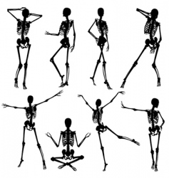 skeleton silhouettes vector image